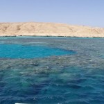 Rafa koralowa w okolicy wyspy Mały Giftun.