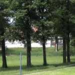 Zza drzew wygląda Ristorante Italiano w Kozinie.